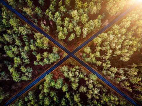 aerial view of forest with crossing streets at sunset