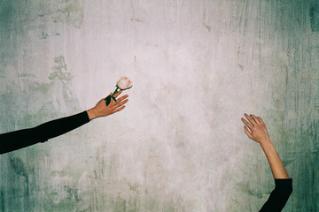 Graceful Hands and Roses Shot on Fuji Film