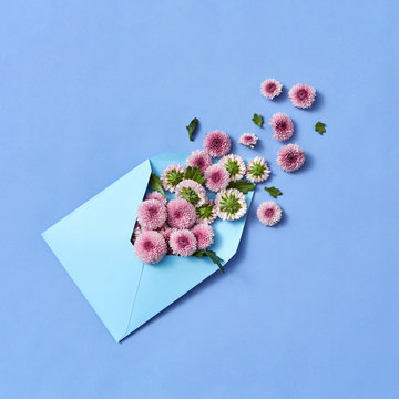 Envelope with hardy chrysanthemums on a pastel background.
