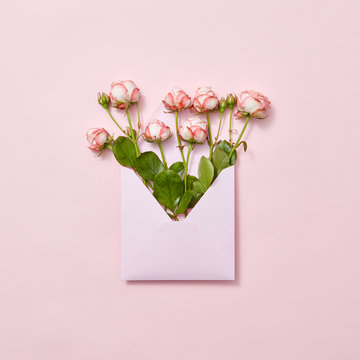 Roses in an envelope on a pastel background.