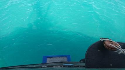 Photo sur Plexiglas Turquoise Port de peche hammamet, Tunisie