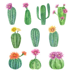 Watercolor hand painted exotic cactus set with  flowers. Tropic  flowering plants. Mexican style clip art perfect for wedding invitation and botanical print