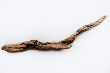 Fototapeta Driftwood/aged wood over white background. Isolated piece of driftwood top view. Driftwood stick closeup, wood texture for aquarium. obraz