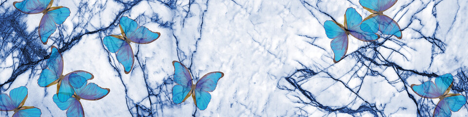 Blue marble texture and blue morpho butterflies. abstract natural pattern for design. blue abstract background