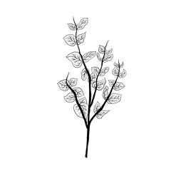 Fototapeta Simple not perfect black branch silhouette with leaves. Icon illustration isolated on white. Hand drawing vector asia sign, symbol. Wabi sabi japanese style.