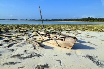 Auslegerboot