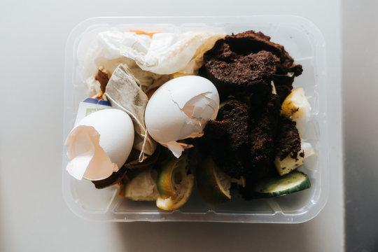 organic waste in a small plastic box