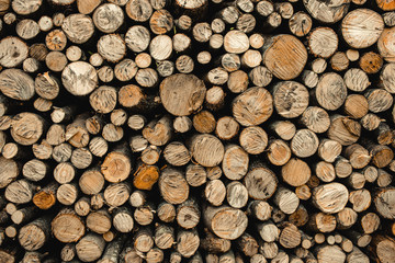 Pile of wood forming a wall. Environmental ecology problems. Deforestation process. background with logs.