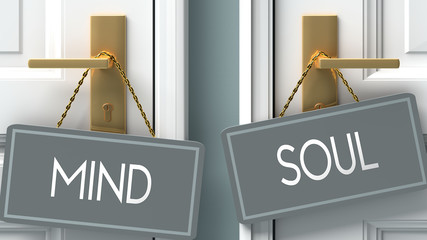 soul or mind as a choice in life - pictured as words mind, soul on doors to show that mind and soul are different options to choose from, 3d illustration