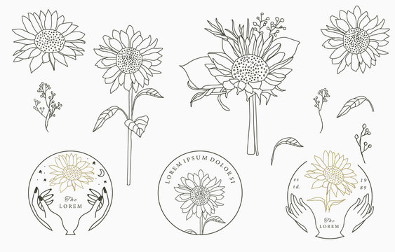 Black,gold flower logo collection with flower,leaves,geometric.Vector illustration for icon,logo,sticker,printable and tattoo