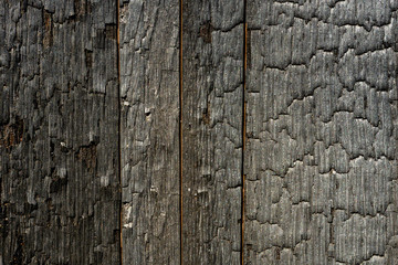 Fototapete - Charred Oak Barrel Texture
