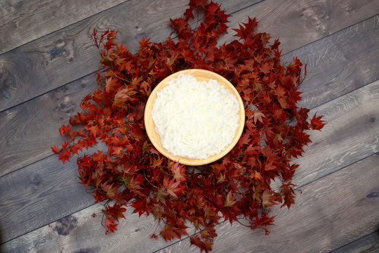 Bird Nest Fantasy Background Photo Prop with vine and red leaves Isolated on distressed wood.