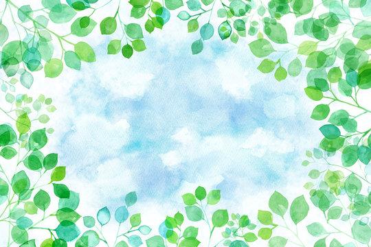 見上げた新緑から覗くの空の背景 木漏れ日の水彩イラスト