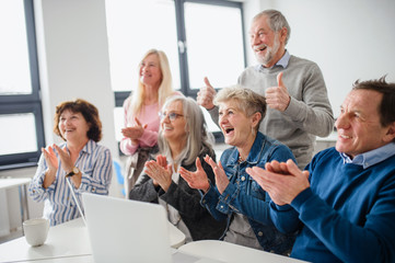 Group of cheerful seniors attending computer and technology education class.