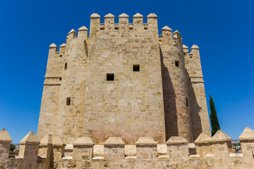 Fototapete - Historic city gate Torre de Calahorra in Cordoba, Spain