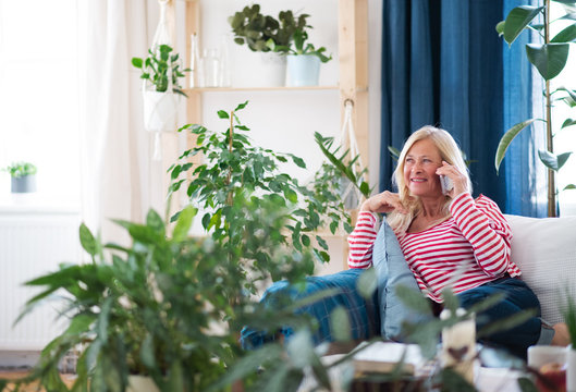 Attractive senior woman with smartphone sitting indoors on sofa, making phone call.