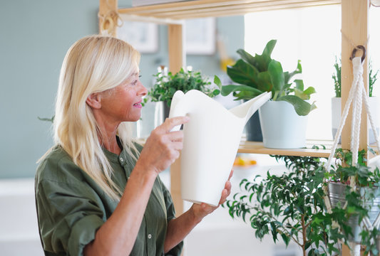 Attractive senior woman watering plants indoors at home.