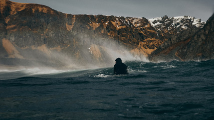 Back of wave and surfer