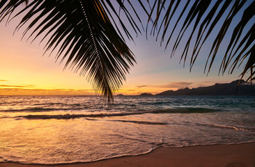 Wall Mural - Beautiful sunset at Seychelles beach