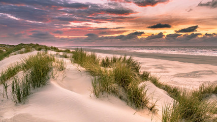 Wall Mural - View from dune over North Sea