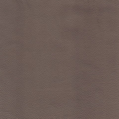 Brown detailed background texture of leather