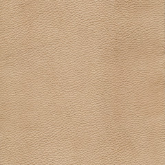 Biege detailed background texture of leather