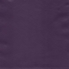 Violet detailed background texture of leather