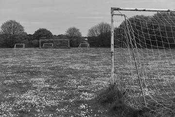 Empty sports field, Jersey, U.K. Football pitch overrun by wildflowers.