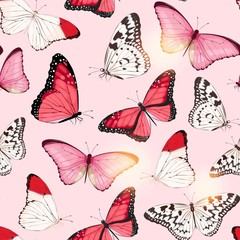 Vector pattern with high detailed tropic butterfly