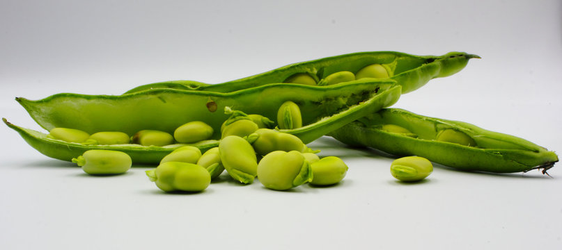 panoramic of open green broad beans in their shells and some shelled beans isolated on a white background