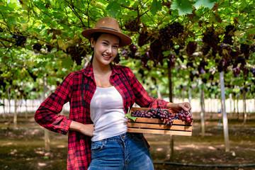 Gardening Young Women Carrying Baskets while Walking Around the Vineyard.