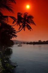 Palmy nad wybrzeżem w Tajlandii