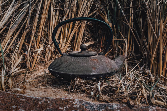teapot for brewing tea on background of grass