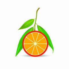 Fresh ripe orange with leaves. Vector EPS10
