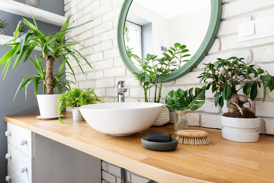 Interior of bathroom with a lot of plants on wooden counter and round mirror on white brick wall. Scandinavian style at home apartment.