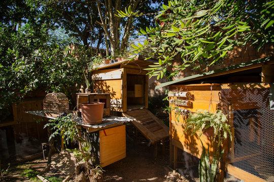 Chicken coops in a urban garden