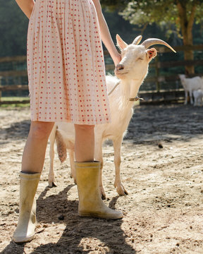 Woman wearing a red summer dress on a farm, with a goat on a leash.