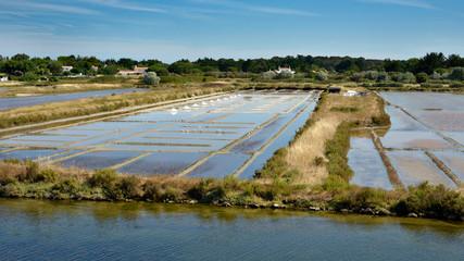 Salt marches of Noirmoutier en l'Ile in Pays de la Loire region in western France