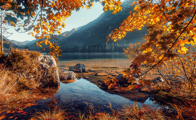 Fotomurales - Awesome sunny landscape in the forest. Wonderful Autumn scenery. Picturesque view of nature wild lake. Sun rays through colorful trees. Incredible view on mountains lake. Amazing natural Background
