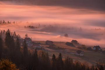 Stores photo Cappuccino Jesienne mgły w dolinie