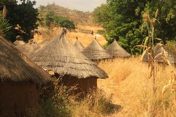 Fototapeta tradycyjne afrykańskie okrągłe chaty pokryte słomą wśród suchych traw obraz