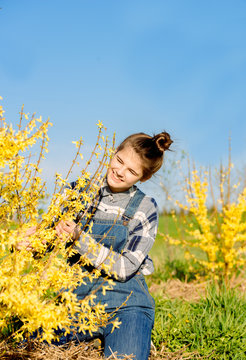 Girl farmer caring for a yellow bush and fruit tree. in denim overalls. Blue cloudless sky. Flowering bush of Forsythia. Spring teenager girl in garden outdoors.worker hands close up