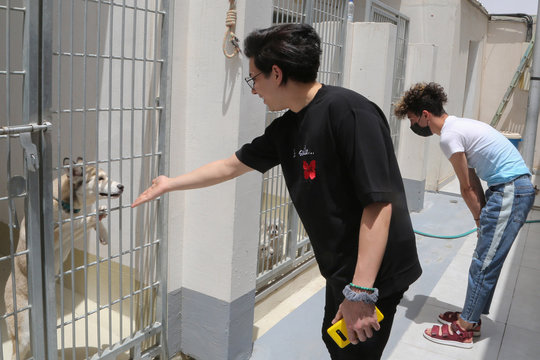 Young people look at animals at Riyadh's animal shelter, dedicated to caring for animals amid fear that cats and dogs might contract or transmit the coronavirus disease (COVID-19), Riyadh