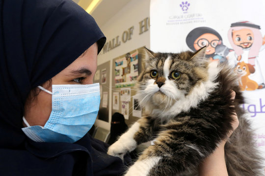 A Saudi woman wears protective face mask as she holds her cat at Riyadh's animal shelter, dedicated to caring for animals amid fear that cats and dogs might contract or transmit the coronavirus disease (COVID-19), Riyadh
