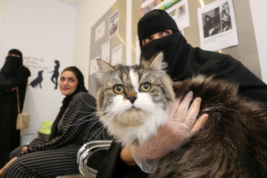 A Saudi woman holds her cat at Riyadh's animal shelter, dedicated to caring for animals amid fear that cats and dogs might contract or transmit the coronavirus disease (COVID-19), Riyadh