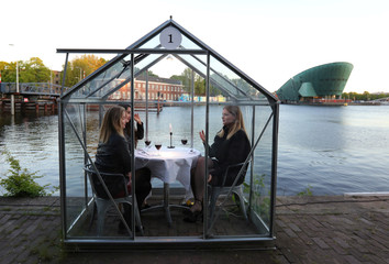 """""""Quarantine greenhouses"""" are being tested in which guests can dine at a restaurant in Amsterdam"""