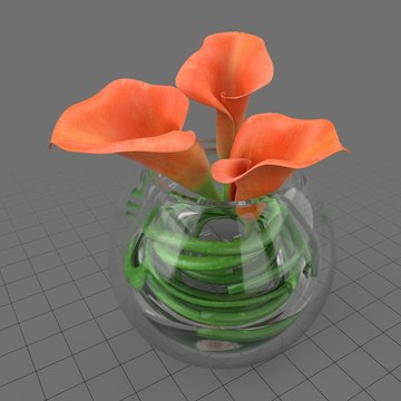 Calla lilies in glass vase 1