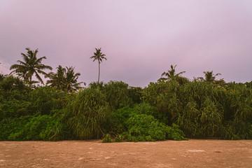 Tropikalna plaża o zachodzie słońca.