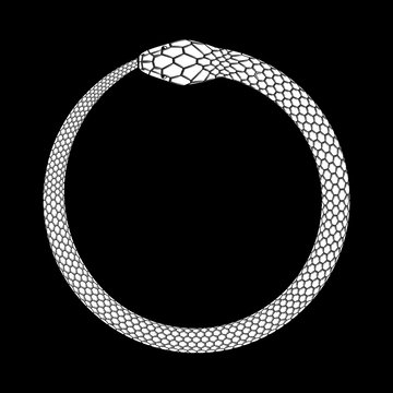 Ouroboros icon, detailed symbol of snake eating its own tail. White vector illustration EPS 10