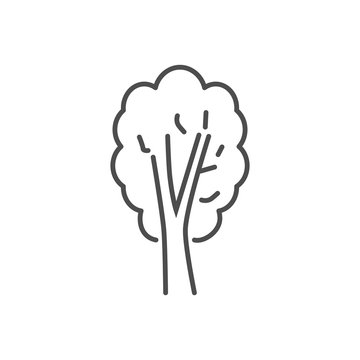 Tree related vector thin line icon. Isolated on white background. Editable stroke. Vector illustration.